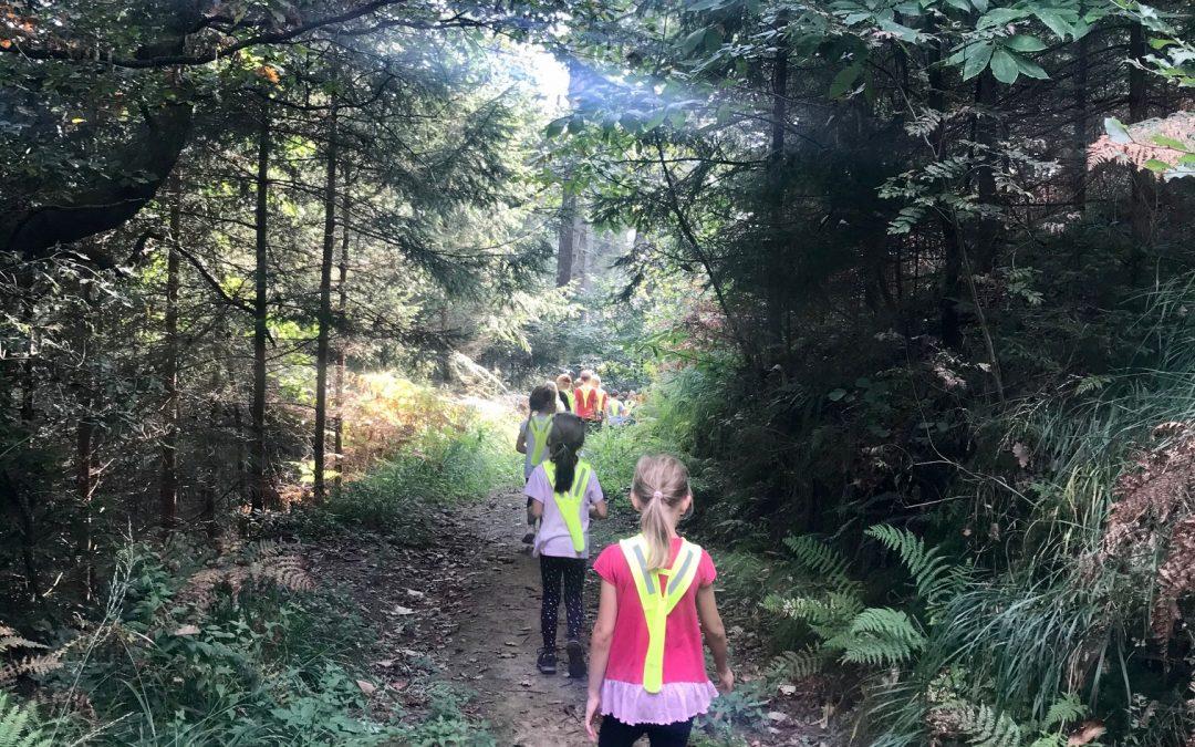 Prvošolci v gozdu